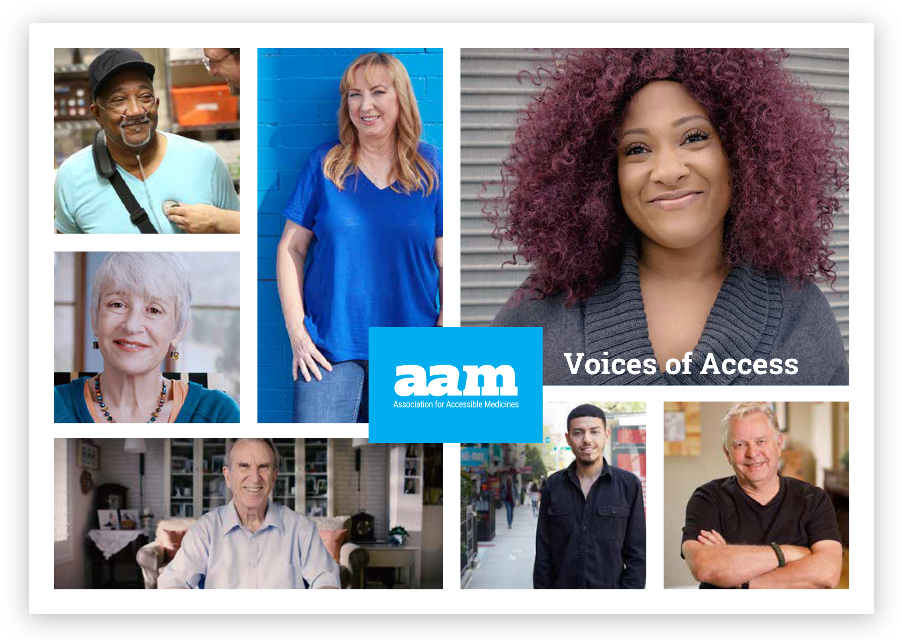 AAM Voices of Access report